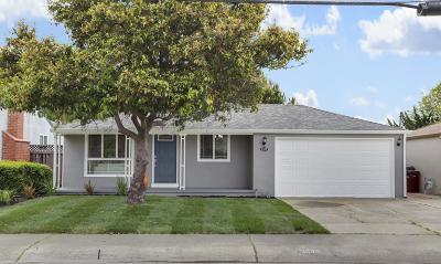 San Lorenzo Single Family Home For Sale: 1588 Bandoni Avenue