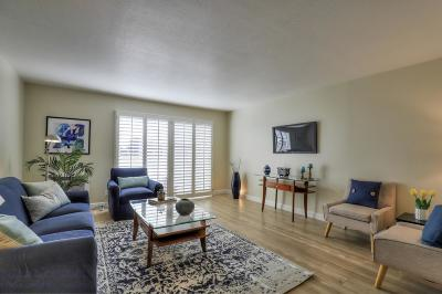 Mountain View Condo/Townhouse For Sale: 1033 Crestview Drive #312