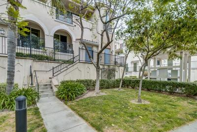 Milpitas Condo/Townhouse For Sale: 776 Hammond Way