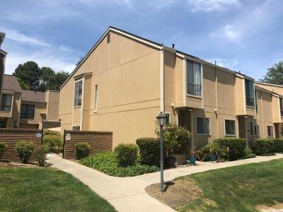 San Ramon CA Condo/Townhouse For Sale: $485,000