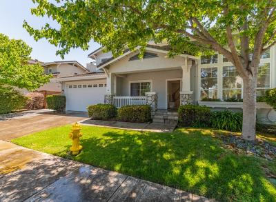 Gilroy Single Family Home For Sale: 1268 Blue Parrot Court