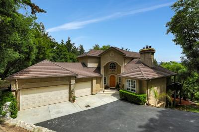 Los Gatos Single Family Home For Sale: 20065 Thompson Road