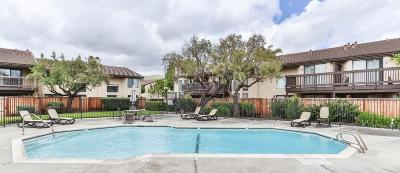 Fremont CA Condo/Townhouse For Sale: $888,888