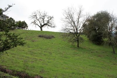 Gilroy Residential Lots & Land For Sale: 2320 Wildrose Court