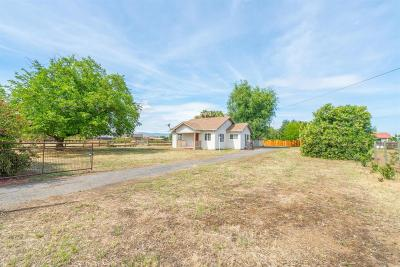 Tracy Single Family Home For Sale: 31091 S Koster Road