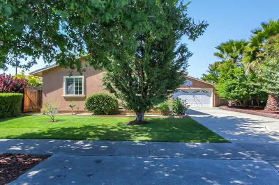 San Jose Single Family Home For Sale: 3955 Yellowstone Drive
