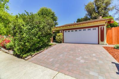 Pleasanton Single Family Home For Sale: 7292 Stonedale Drive
