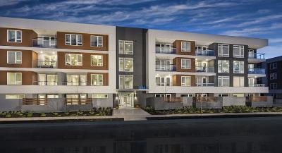 San Jose Condo/Townhouse For Sale: 5933 Sunstone Drive #207