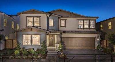 Gilroy Single Family Home For Sale: 765 Baxter Way