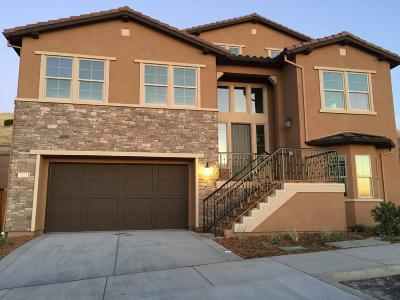 San Jose Single Family Home For Sale: 1402 Cottlestone Court