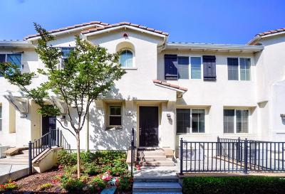Milpitas Condo/Townhouse For Sale: 137 Parc Place Drive