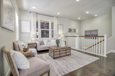 Santa Clara Single Family Home For Sale: 23 Conner Place