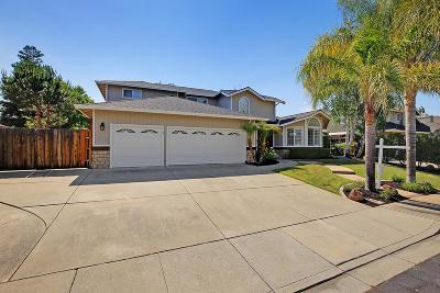 Livermore Single Family Home For Sale: 1824 Mount Diablo Way
