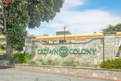 Daly City Condo/Townhouse Pending Show For Backups: 377 Mandarin Drive #210