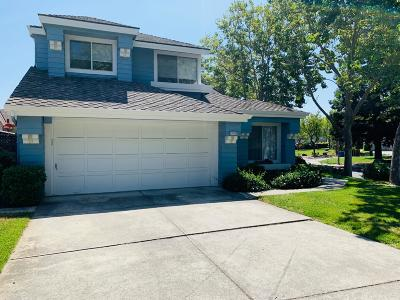 Cupertino Rental For Rent: 11632 Seven Springs