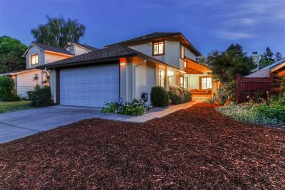 Pleasanton Single Family Home For Sale: 1932 Rheem Drive