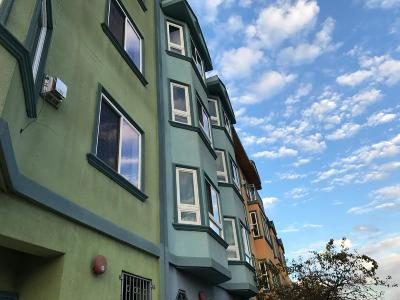 San Francisco Multi Family Home For Sale: 316 Alemany Boulevard
