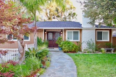 Los Gatos Single Family Home For Sale: 209 Mistletoe Road