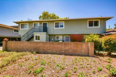 Sunnyvale Condo/Townhouse For Sale: 1135 Reed Avenue #D