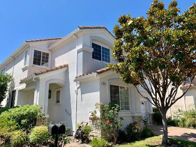 Cupertino Single Family Home For Sale: 20436 Via Palamos