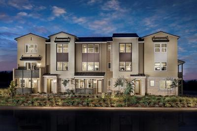 Milpitas Condo/Townhouse For Sale: 479 Desert Holly Street