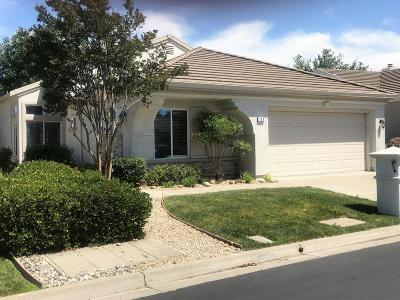 Contra Costa County Single Family Home For Sale: 120 Gala Lane