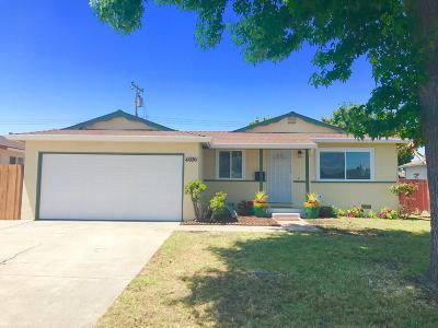 Santa Clara Single Family Home For Sale: 4696 Armour Drive