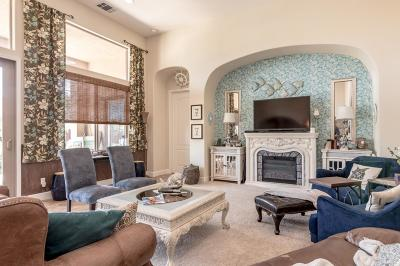 Manteca Single Family Home For Sale: 4203 Volpaia Place Place