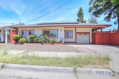 Hayward Single Family Home For Sale: 28278 Cole Place
