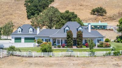 Gilroy Single Family Home For Sale: 2563 Bridle Path Drive