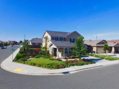 Antioch Single Family Home For Sale: 3156 Almondridge Drive