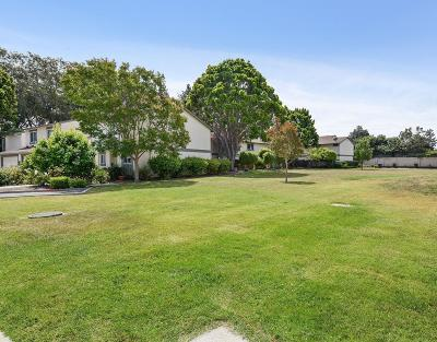 Sunnyvale Condo/Townhouse For Sale: 609 Lakehaven Terrace