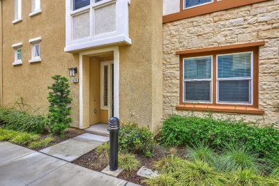 Milpitas Condo/Townhouse For Sale: 1578 Canal Street