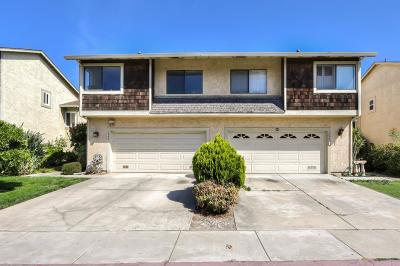 Santa Clara County Single Family Home For Sale: 1732 River Birch Drive