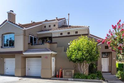 Santa Clara County Condo/Townhouse For Sale: 6944 Gregorich Drive #F