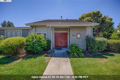 Santa Clara County Condo/Townhouse For Sale: 1346 Star Bush Lane