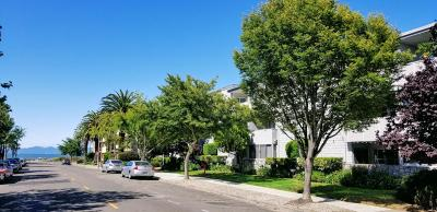 Alameda Condo/Townhouse For Sale: 325 Kitty Hawk Road #113