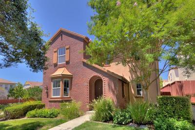 Santa Clara County Single Family Home For Sale: 4375 Angelico Drive