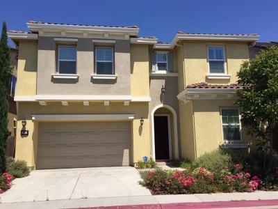 Milpitas Single Family Home For Sale: 96 Calypso Lane