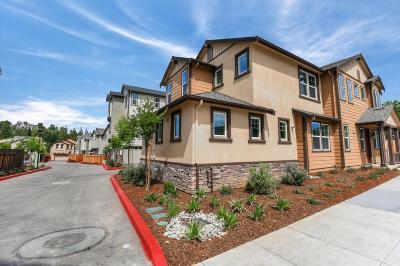 San Jose Single Family Home For Sale: 1020 Skybo Court