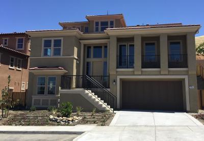 San Jose Single Family Home For Sale: 1438 Cottlestone Court