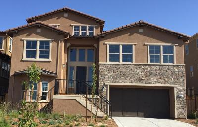 San Jose Single Family Home For Sale: 1432 Cottlestone Court
