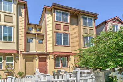Sunnyvale Condo/Townhouse For Sale: 202 Peppermint Tree Terrace #5