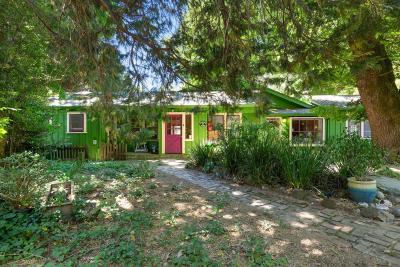 Santa Cruz Single Family Home For Sale: 24 Grainger Lane
