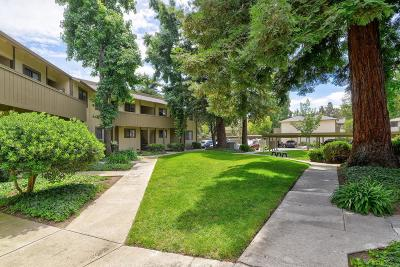 Milpitas Condo/Townhouse For Sale: 1177 N Abbott Avenue