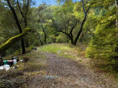 Los Gatos Residential Lots & Land For Sale: Treehouse