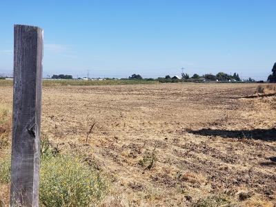Gilroy Residential Lots & Land For Sale: 910 Denio Avenue