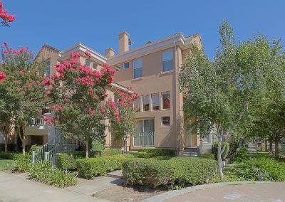 Mountain View Condo/Townhouse For Sale: 152 Paseo Ct