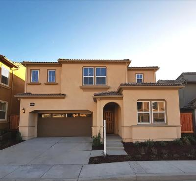 Hayward Single Family Home For Sale: 29737 Cantera Drive