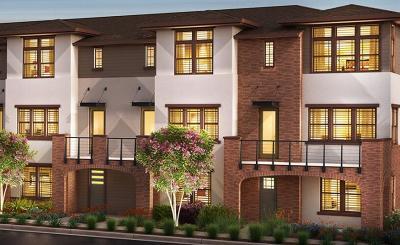 Sunnyvale Condo/Townhouse For Sale: 927 Delano Terrace #5